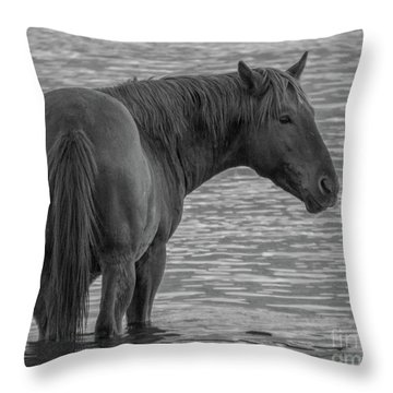Horse 10 Throw Pillow