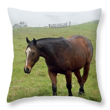 Horse In The Fog Throw Pillow