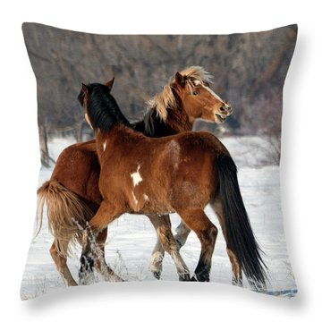 Throw Pillow featuring the photograph Horseplay by Mike Dawson