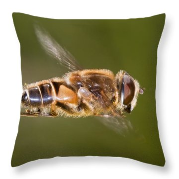 Hoverfly In Flight Throw Pillow