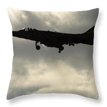 Hovering Throw Pillow by Angel  Tarantella