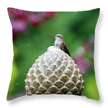 Hummingbird On Garden Water Fountain Throw Pillow by David Gn