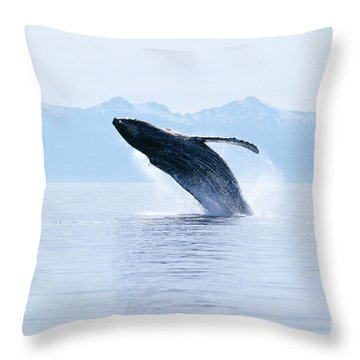 Humpback Whale Breaching Throw Pillow by John Hyde - Printscapes