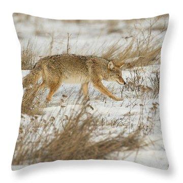 Hunting Throw Pillow by Scott Warner