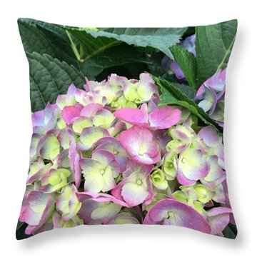 Throw Pillow featuring the photograph Hydrangea by Kay Gilley