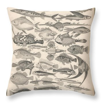 Ichthyology Throw Pillow