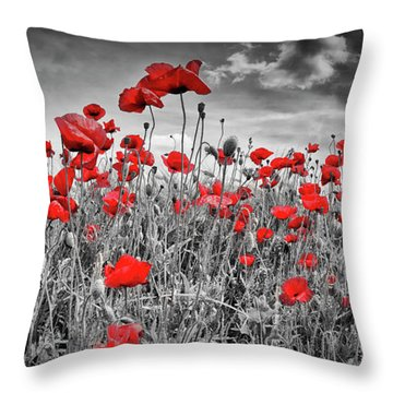 Idyllic Field Of Poppies Panoramic Colorkey Throw Pillow