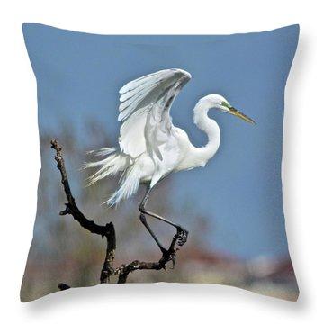 I'll Fly Away Throw Pillow by Carol Bradley