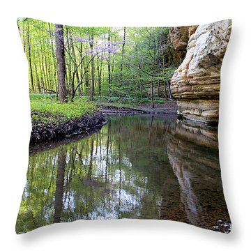 Illinois Canyon In Spring Throw Pillow