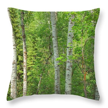 In The Aspen Forest Throw Pillow by Jim Sauchyn