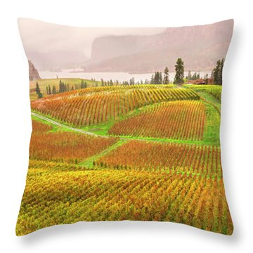 In The Early Morning Rain Throw Pillow by John Poon