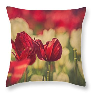 In The Garden Throw Pillow by Billie-Jo Miller