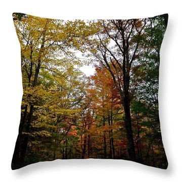 Inside The Color Throw Pillow
