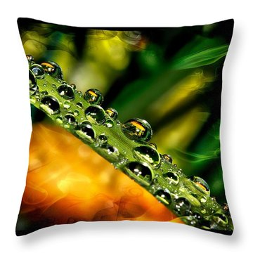 Throw Pillow featuring the photograph Inspiration by Michaela Preston