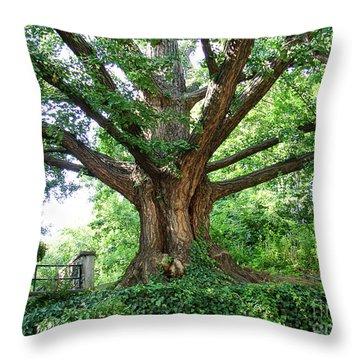 Inwood Ginkgo  Throw Pillow