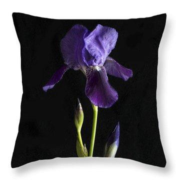 Throw Pillow featuring the photograph Iris by Elena Nosyreva