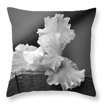 Throw Pillow featuring the photograph Iris by Lila Fisher-Wenzel