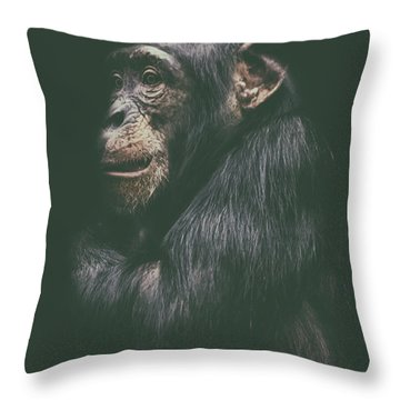 Its Cold Outside Throw Pillow