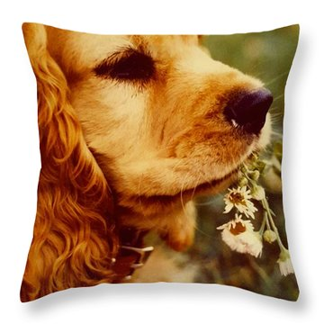 It's Spring Throw Pillow