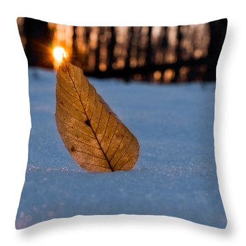 Its The Small Things Throw Pillow by Craig Szymanski
