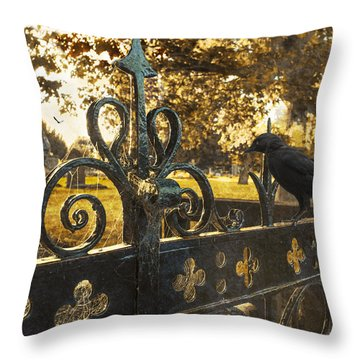 Jackdaw On Church Gates Throw Pillow by Amanda Elwell