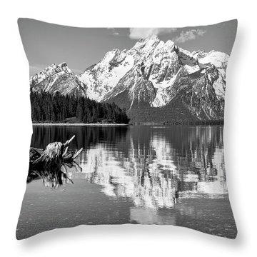 Jackson Lake, Gtnp  Throw Pillow