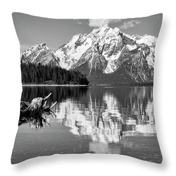 Throw Pillow featuring the photograph Jackson Lake, Gtnp  by Joe Paul