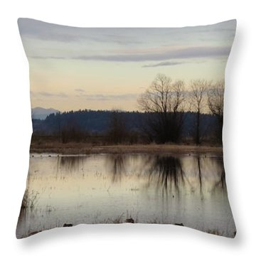 January Thaw 2 Throw Pillow by I'ina Van Lawick