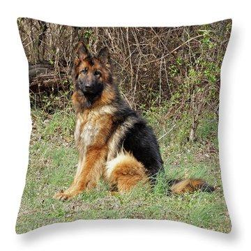 Jessy Throw Pillow