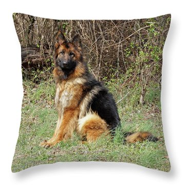 Jessy Throw Pillow