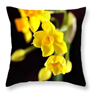 Jonquil Throw Pillow