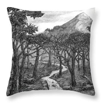 Jordan Creek Throw Pillow