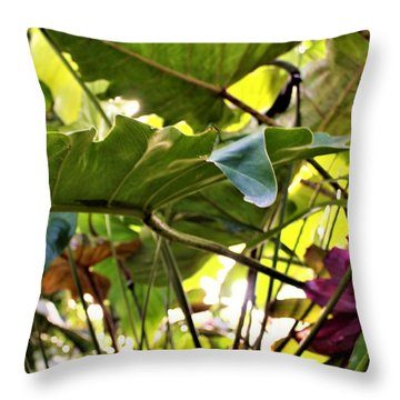 Throw Pillow featuring the photograph Jungle Jive by Mindy Newman
