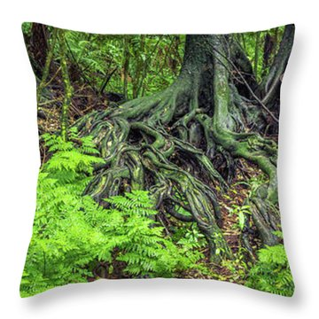 Throw Pillow featuring the photograph Jungle Roots by Les Cunliffe
