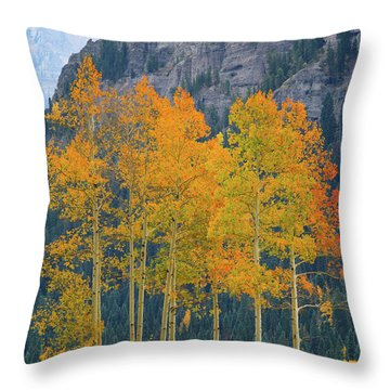 Just The Ten Of Us Throw Pillow