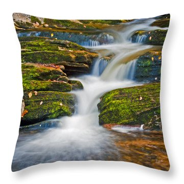 Kent Falls Throw Pillow