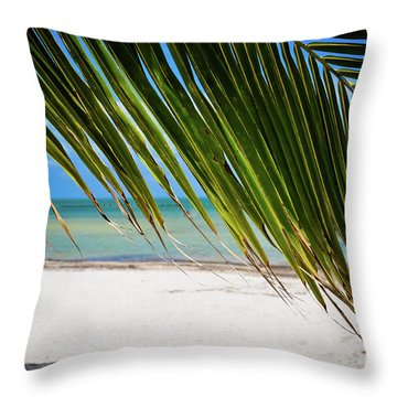 Throw Pillow featuring the photograph Key West Palm by Kelly Wade