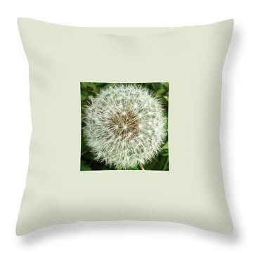 Kind Such As The Flower   Throw Pillow by Sobajan Tellfortunes