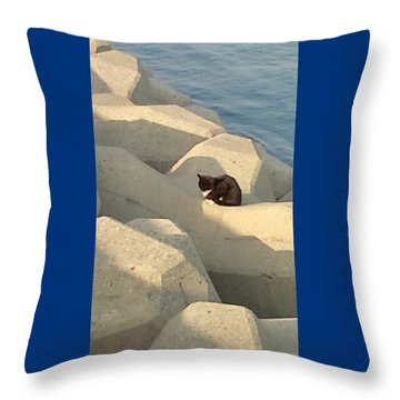 Koneko Means A Kitten. Throw Pillow