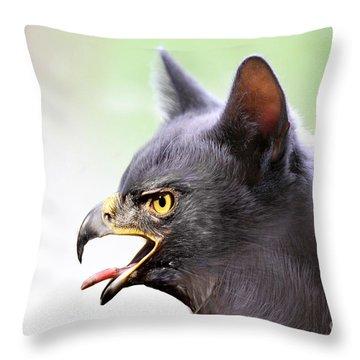 Kitty Hawk Throw Pillow