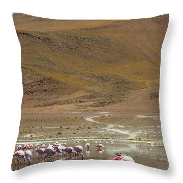 Laguna Colorada, Andes, Bolivia Throw Pillow