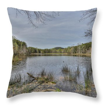 Lakeview Throw Pillow