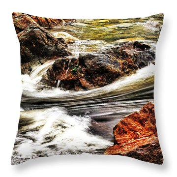 Lamina Flow Throw Pillow by Blair Stuart