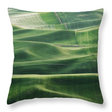 Land Waves Throw Pillow by Ryan Manuel