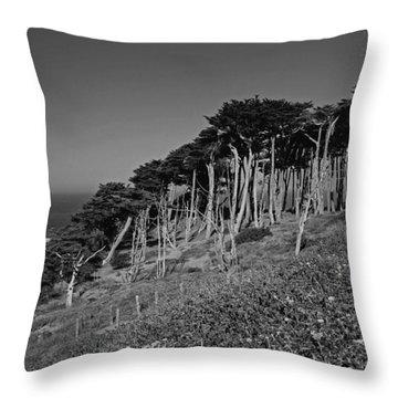 Lands End In San Francisco Throw Pillow