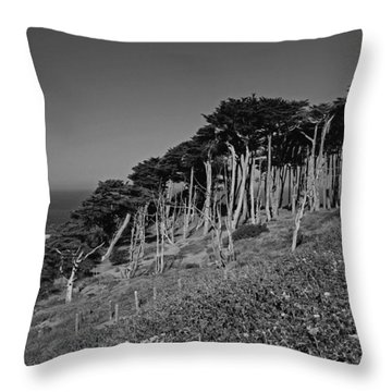 Lands End In San Francisco Throw Pillow