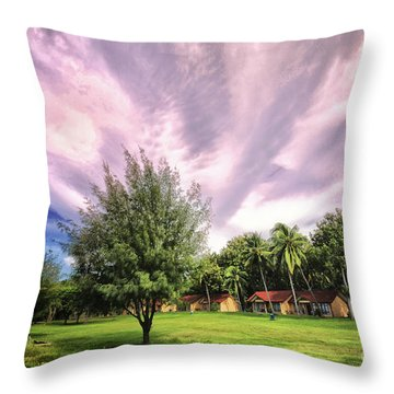 Throw Pillow featuring the photograph Landscape  by Charuhas Images