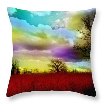 Landscape In Red Throw Pillow by Julie Grace
