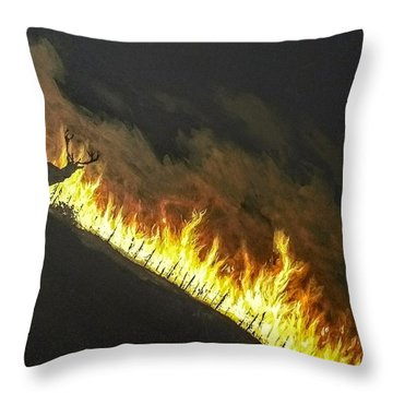 Last Look Back Home Throw Pillow