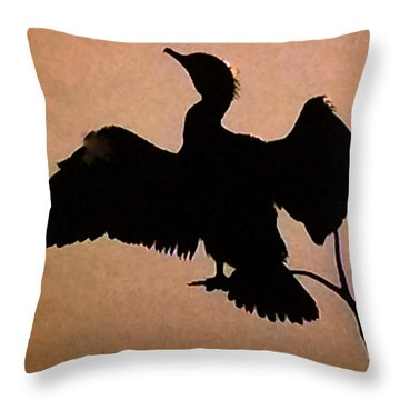 Throw Pillow featuring the photograph Late Day  by Colette V Hera  Guggenheim